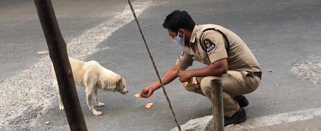 Blue Cross of Hyderabad - Hyderabad Police Feeding Community Animals